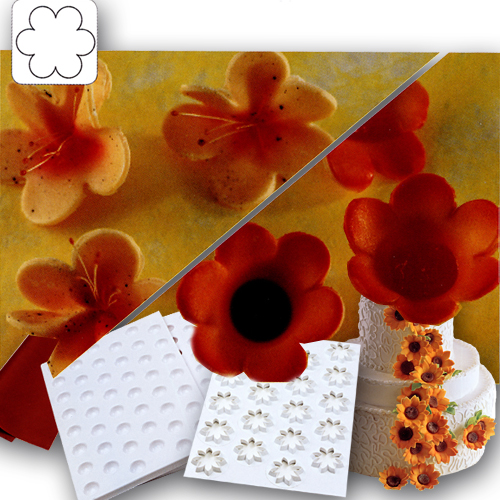 Easy Flowers Kit No. 007 - bloem - Ø 75mm
