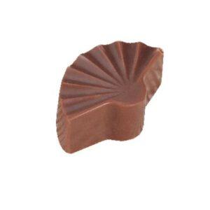 Polycarbonaat Bonbon Chocoladevorm: Waaier