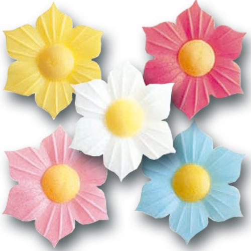 Ouwel Bloemetjes: Narcissen - 100st/ds