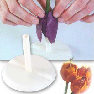 Modeleer standaard voor tulp